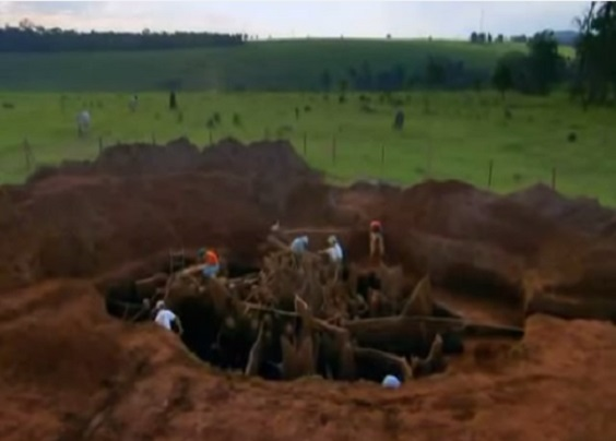 You'll Think They're Just Digging A Hole. But When You Know What They're Up To, You'll Drop Your Jaw. Whew! Is It Real?