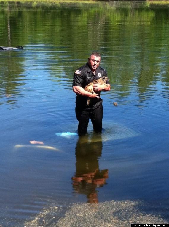 Cop Rescues Dog