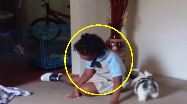 This Little Girl Has A Priceless Reaction After Receiving Her New Puppy