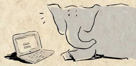 Here's Why Elephants Can't Forget Things Unlike You