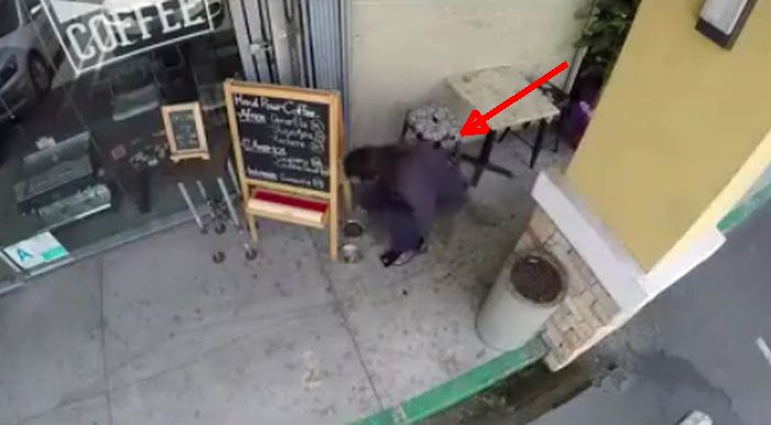 They Filmed What's Happening Outside A Coffee Shop. But, They Were Surprised To See This.
