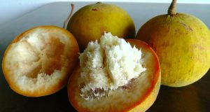 Surprising Healthy Benefits Of Cotton Fruit Or Santol